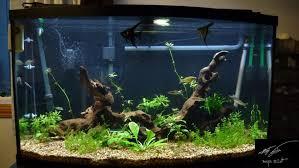 national geographic aquarium light gallon aquarium maxresdefault national geographic gallon aqua oasis