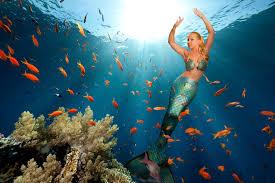 mermaid melissa real life mermaid professional mermaid for hire