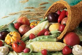 harvest cornucopia harvest cornucopia stock photo image of green fall harvest