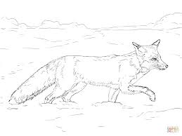 polar animal coloring pages within tundra animals coloring pages