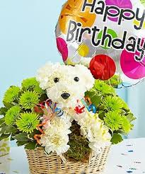 Flowers For Birthday Five Reasons Why You Shouldn U0027t Rely On Birthday Flowers For Her