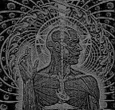Meme Text Art - cool lateralus based ascii art i found while googling toolband
