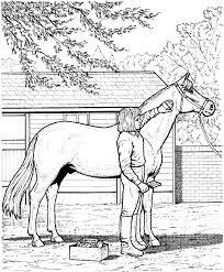 ausmalbilder pferde 07 ausmalbilder pferde pinterest horse