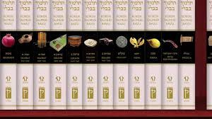 steinsaltz talmud koren talmud bavli a taste of passover