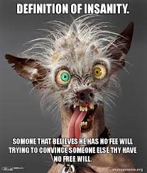 Define Internet Meme - definition of insanity somone that believes he has no fee will