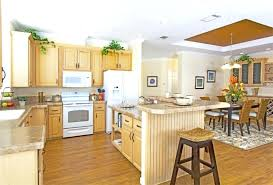mobile home interior design pictures decorating mobile homes bauapp co