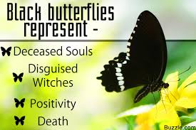 symbolizes meaning get to know the symbolism and meaning of a black butterfly