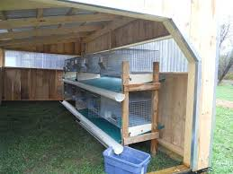 Build Your Own Rabbit Hutch Plans Best 25 Rabbit Cages Ideas On Pinterest Cages For Rabbits