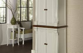 cabinet enchanting free standing storage kitchen cabinets