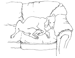 Couch Drawing Sketches Diane Bhothipiti My Photo Adventures Elsewhere