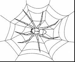 marvelous spider web coloring pages with spider coloring page