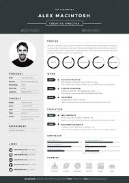 resume format for professional resume templates cv example