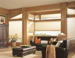 cellular shades u0026 honeycomb window shades blind spot