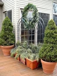 best trees for pots perth small trees and shrubs in groups of