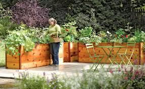 raised beds in garden the garden inspirations