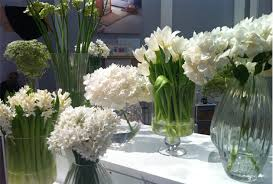 Frugal Flowers - frugal flower ideas for january the womens room
