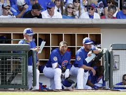 Chicago Cubs Crib Bedding Chicago Cubs Five Cubs Players Who Will Improve In 2017 Cubbies