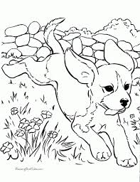 exciting christmas kitten coloring pages printable puppy coloring