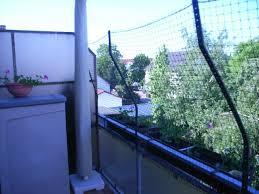 katzenschutz balkon die besten 25 balkon katzensicher ideen auf balkon