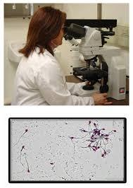 forensic serology new jersey state