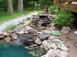 awesome garden and pond remodeling