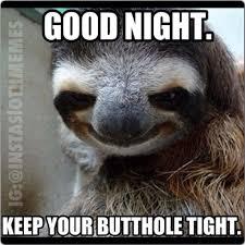 Asthma Sloth Meme - sloth nighty night nighty night sloth and meme