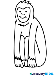 monkey coloring discovery kids