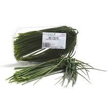 erba cipollina in vaso erba cipollina fresca acquista