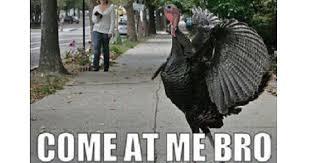 Happy Thanksgiving Meme - thanksgiving meme 2017 images golifehacks