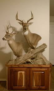 Deer Pedestal Deer Pedestal Mount Ideas Arkansas Hunting Your Arkansas