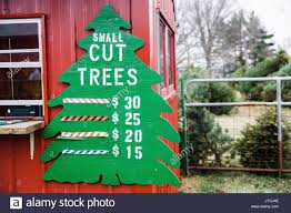 christmas tree farm sign stock photos u0026 christmas tree farm sign