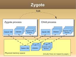 android zygote zygote forkzygote process child process