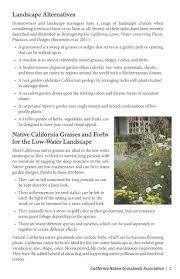 california u0027s new front yard water conservation coalition of