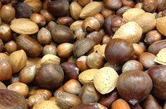christmas nuts phytic acid in nuts seeds cocoa and coconut