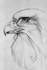 tekeningen van het meisje met vogels eyespired martina