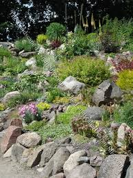 Rock Gardens On Slopes Hillside Rock Garden Plants