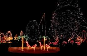 holiday lights st louis holiday lights st louis style dawn griffin real estate group