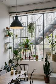urban country style interior design plants making a statement