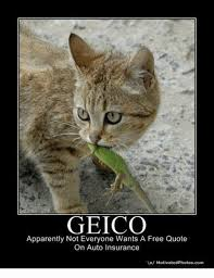 geico quote auto unique geico appaly not everyone wants a free quote on auto insurance