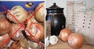 oignon chambre b l ultime solution pour conserver l ail et les oignons pendant une