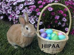 peter cottontail u2013 hopping hipaa trail