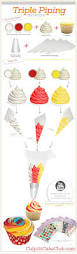 best 25 cupcake frosting tips ideas on pinterest cupcake