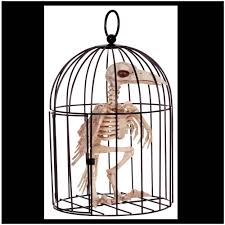 Halloween Skeleton Prop by Skeleton Bird In Cage Halloween Prop Mad About Horror