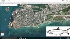 key west kayak fishing kayak fishing key west harbor for tarpon