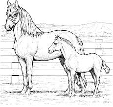 nice horse coloring pictures gallery kids idea 1878 unknown