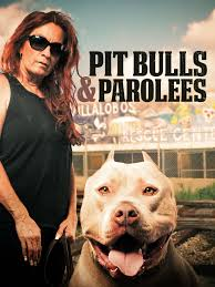 Seeking Season 1 Episode 3 Pitbull Pit Bulls And Parolees Episodes Season 10 Tv Guide