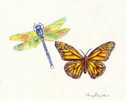 butterfly sketch etsy