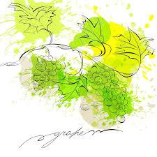 grape vine sketch frame round label stock vector colourbox