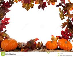 halloween pumpkin transparent background border of pumpkins on hay on white stock image image 11451711