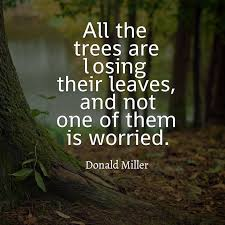 best 25 tree quotes ideas on quotes on fear reason